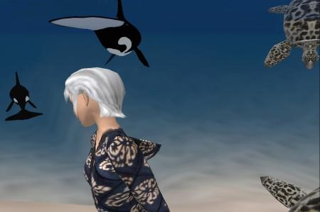 sarima e il mare